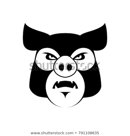 Angry pig. Evil boar. grumpy hog. Aggressive piggy Stock photo © popaukropa