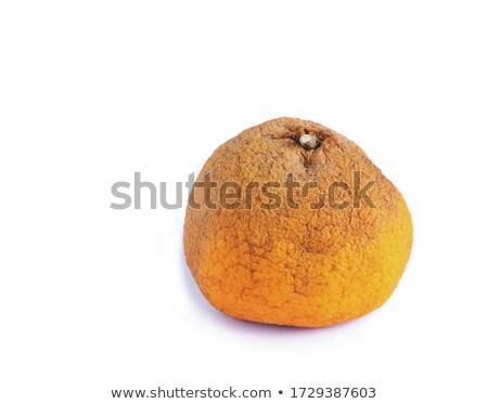 Een rot oranje voedsel slechte Stockfoto © Digifoodstock