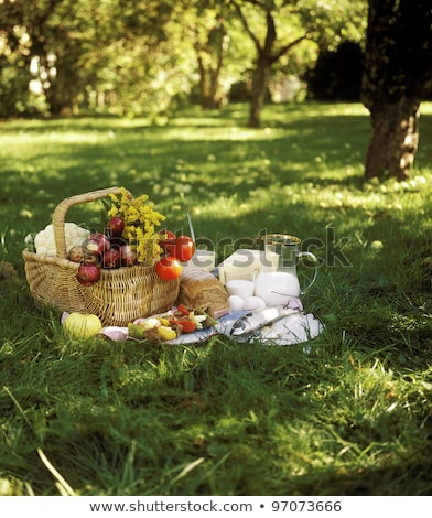 Close up of food and picnic basket on blanket Stock photo © deandrobot