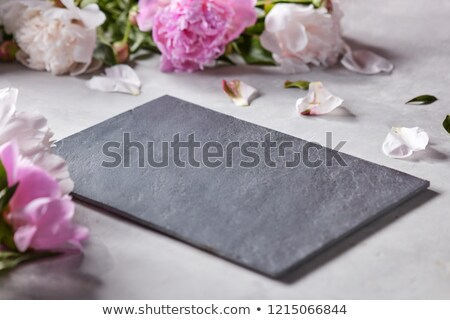 slate board decorated with petals and pink flowers of peonies on a gray concrete background with cop stock photo © artjazz