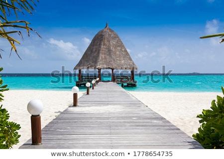 Fából készült kunyhó sziget illusztráció tájkép tenger Stock fotó © colematt