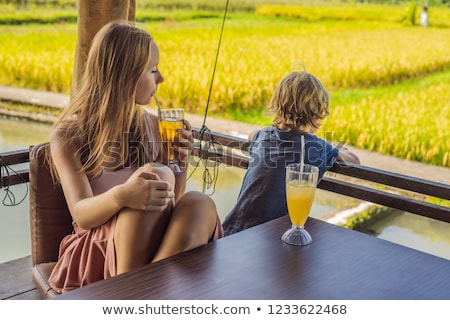 Mom and son drink drinks in a rice terrace cafe, Bali, Ubud Stock photo © galitskaya