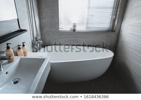 водопроводный кран иллюстрация домой фон комнату ванную Сток-фото © olegtoka