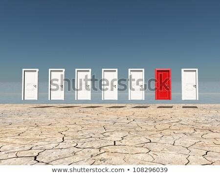 Parecchi porte illustrazione bianco abstract design Foto d'archivio © get4net