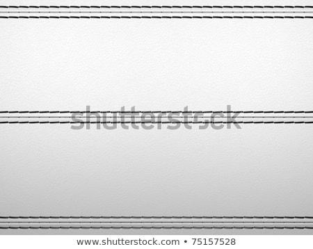 Light grey horizontal stitched leather background Stock photo © Arsgera