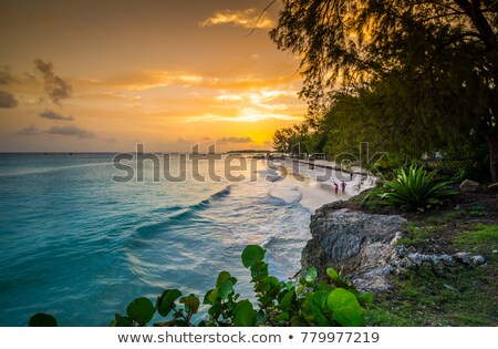 Enterprise Beach, Barbados, Caribbean Stock photo © phbcz