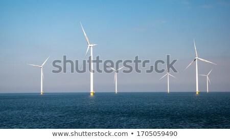 Bireysel rüzgar türbini teknoloji sanayi enerji rüzgâr Stok fotoğraf © njaj