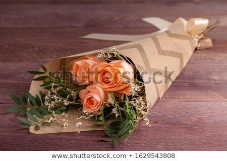 Tres rosas púrpura aislado blanco flor Foto stock © mahout
