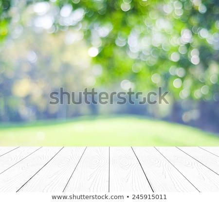 белый зеленый квадратный аннотация бумаги стены Сток-фото © shamtor