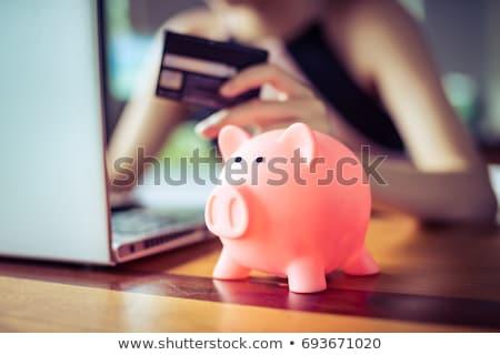 Zakupy zapisać banku piggy koszyk tle Zdjęcia stock © stevemc