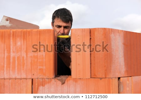 An assiduous bricklayer Stock photo © photography33