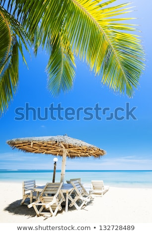 Tropical beach in sunny day. Vertical panoramic composition. Stock photo © moses