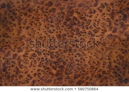 текстура древесины изображение природного текстуры древесины Сток-фото © tiero