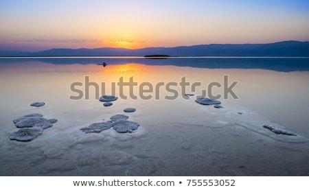 tájkép · Holt-tenger · tengerpart · nyár · nap · égbolt - stock fotó © eldadcarin