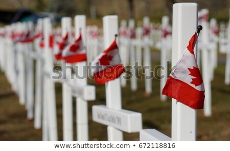 Canadian patriot. Vertical composition. Stock photo © moses