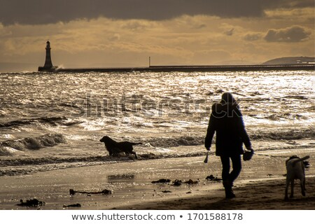 A view of silhouetted people walking on a pier Stock photo © sqback