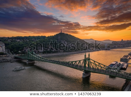 View of Liberty Bridge over Danube and  Buda Castle, Budapest Stock photo © pixachi
