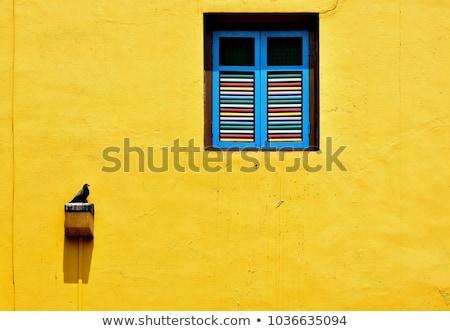 Indië muur kunst detail voorjaar liefde Stockfoto © danielgilbey