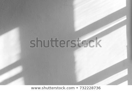 Wood floor and shadows from the blinds Stock photo © CaptureLight