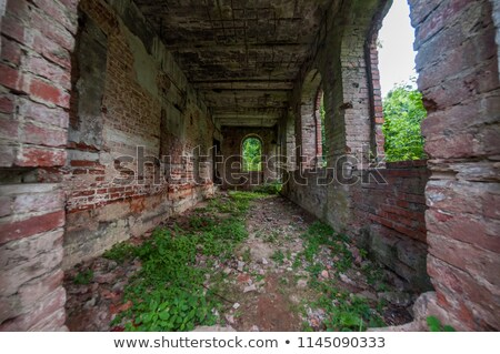 Abandoned manor house in grassy Stock photo © OleksandrO
