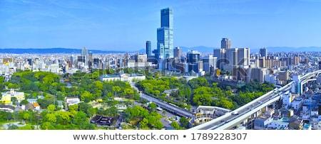 Осака Cityscape Панорама Skyline здании Сток-фото © vichie81