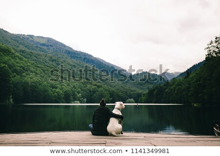 dock on the river stock photo © geniuskp