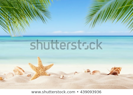 Tenger tájkép pálmalevelek előtér gyönyörű kék Stock fotó © Mikko