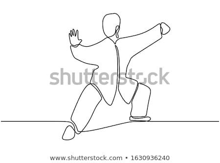 Kungfu Stock photo © bluering