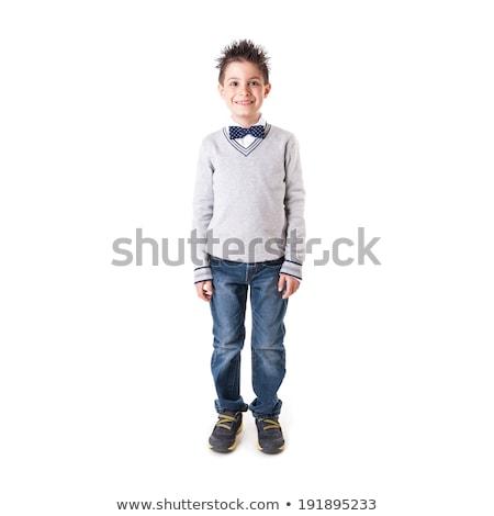 Stock photo: cute papillon portrait in white photo studio