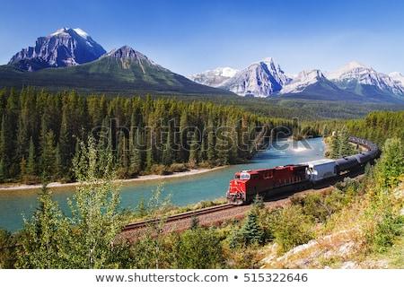 train in the mountains stock photo © joyr