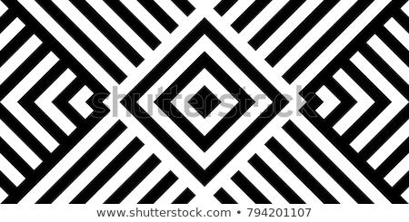 vektör · siyah · beyaz · geometrik · diyagonal · hatları - stok fotoğraf © samolevsky