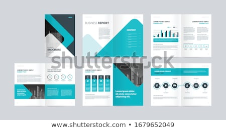 company annual report business brochure design template Stock photo © SArts