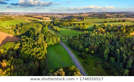 Panorama foresta Germania luce Foto d'archivio © LightFieldStudios
