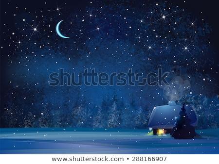 Beautiful wood scene at night Stock photo © bluering