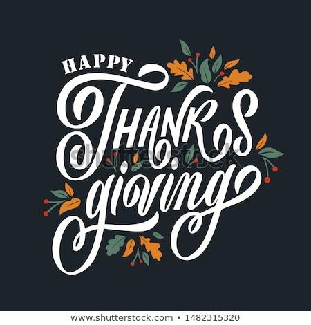 Dibujado a mano feliz acción de gracias tipografía banner celebración Foto stock © MarySan