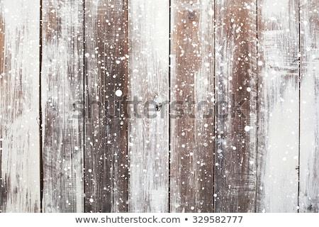 Christmas trees on wood. Fairy Lights Stock photo © mythja