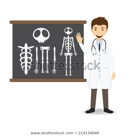 кость · изолированный · анатомии · человека · скелет · человека - Сток-фото © colematt