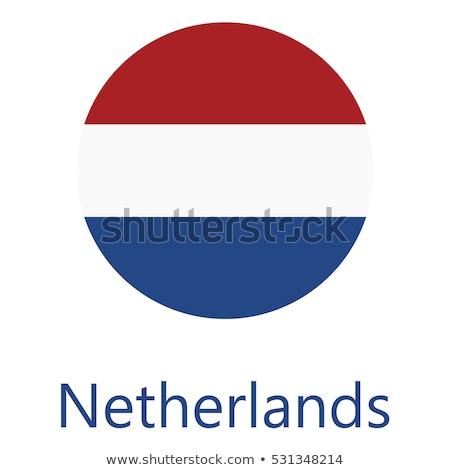 ícone Holanda bandeira ilustração projeto fundo Foto stock © colematt