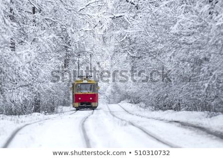 поезд · зима · пейзаж · снега · моста · город - Сток-фото © vichie81