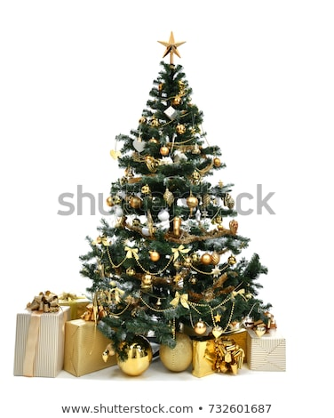 украшенный рождественская елка иллюстрация большой роскошь дерево Сток-фото © Blue_daemon