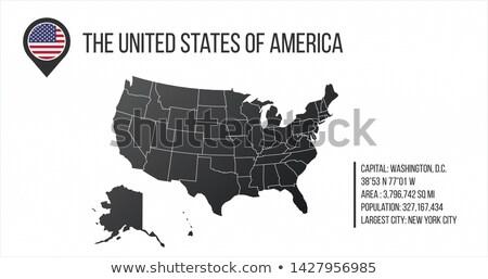 Mapa geral informação bandeira pin infográficos Foto stock © kyryloff