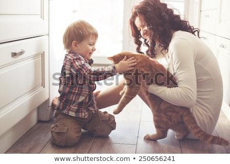 jugando · gato · casa · mujer · mano - foto stock © dashapetrenko
