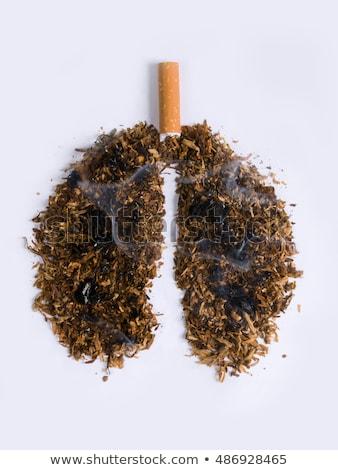 Sigara içme bağımlılık sigara tiryakisi tuzak sigara duman Stok fotoğraf © Lightsource