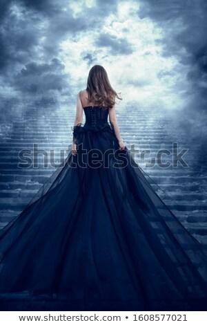 платье скалолазания лестницы вид сбоку довольно Сток-фото © dash