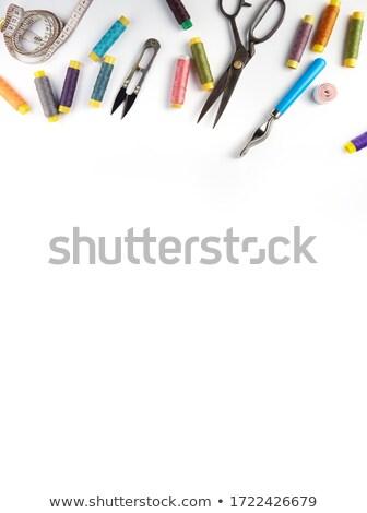 Naaien ingesteld illustratie naald uitrusting Stockfoto © jossdiim