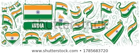 Vektor szett zászló India különböző kreatív Stock fotó © butenkow