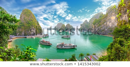 Vietnam boten landschap asian tropische asia Stockfoto © travelphotography