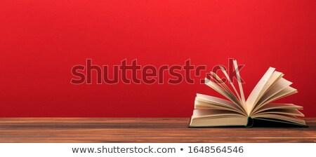 открытой · книгой · книга · в · твердой · обложке · изолированный · иллюстрация · вектора · формат - Сток-фото © cidepix