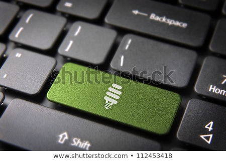 Green energy from laptop Stock photo © TLFurrer