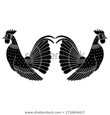 Сток-фото: вектора · силуэта · петух · белый · природы · дизайна